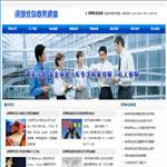 商务调查咨询策划网站模板