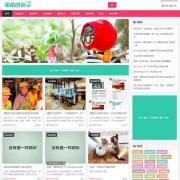 自适应HTML5响应式手机图片新闻下载资讯
